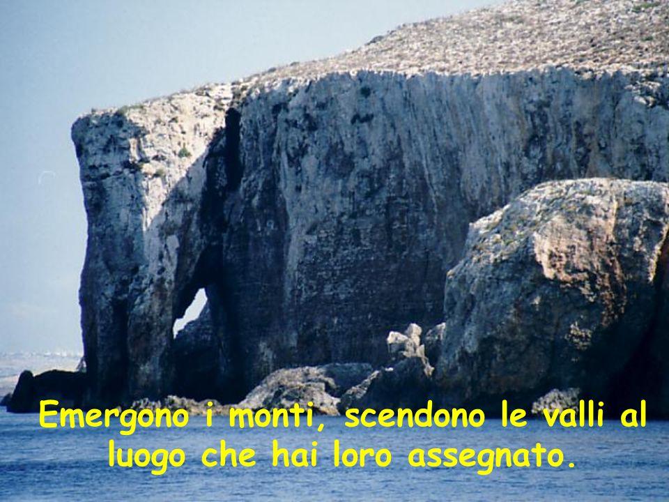 Emergono i monti, scendono le valli al luogo che hai loro assegnato.