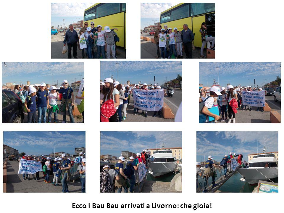 Ecco i Bau Bau arrivati a Livorno: che gioia!