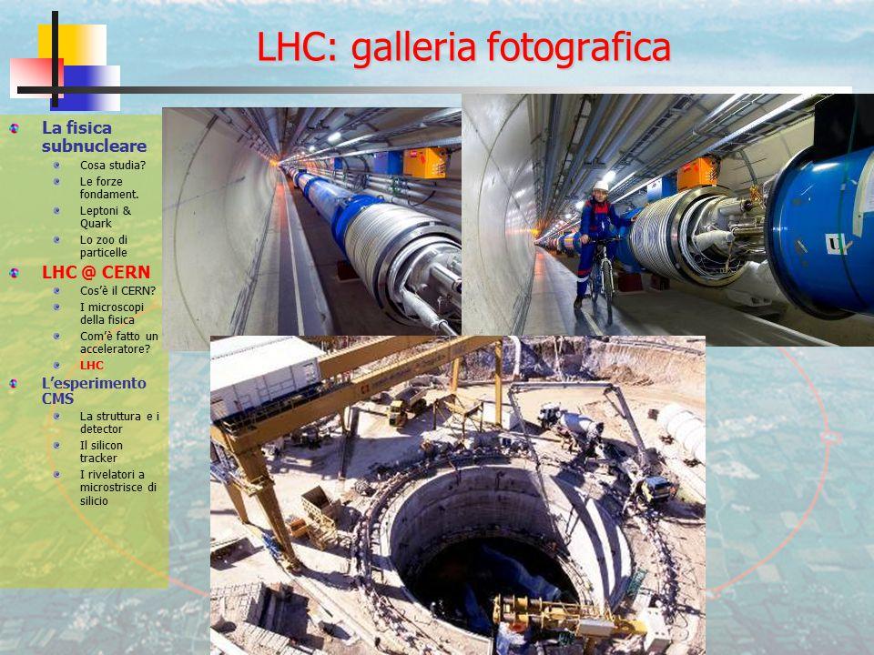 LHC: galleria fotografica La fisica subnucleare Cosa studia.