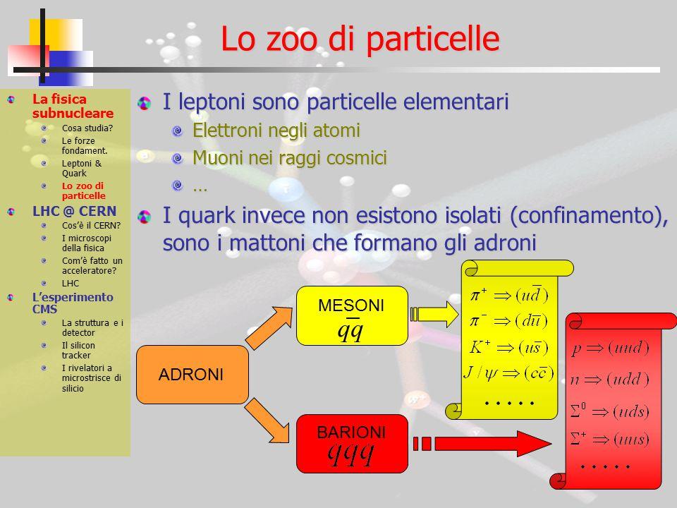 Lo zoo di particelle I leptoni sono particelle elementari Elettroni negli atomi Muoni nei raggi cosmici … I quark invece non esistono isolati (confinamento), sono i mattoni che formano gli adroni La fisica subnucleare Cosa studia.