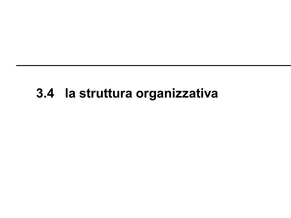 3.4 la struttura organizzativa