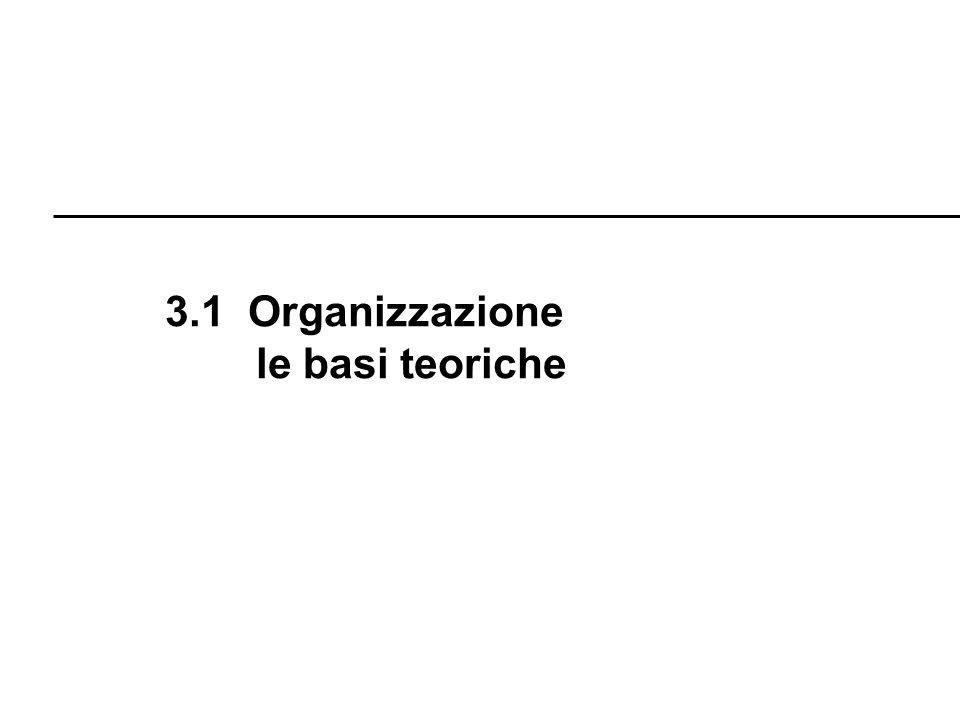 3.1 Organizzazione le basi teoriche