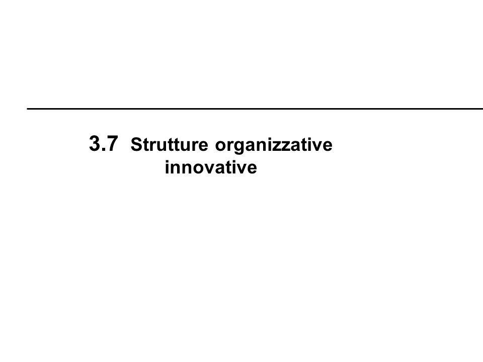 R. Boni Lez. 3 - 51 3.7 Strutture organizzative innovative