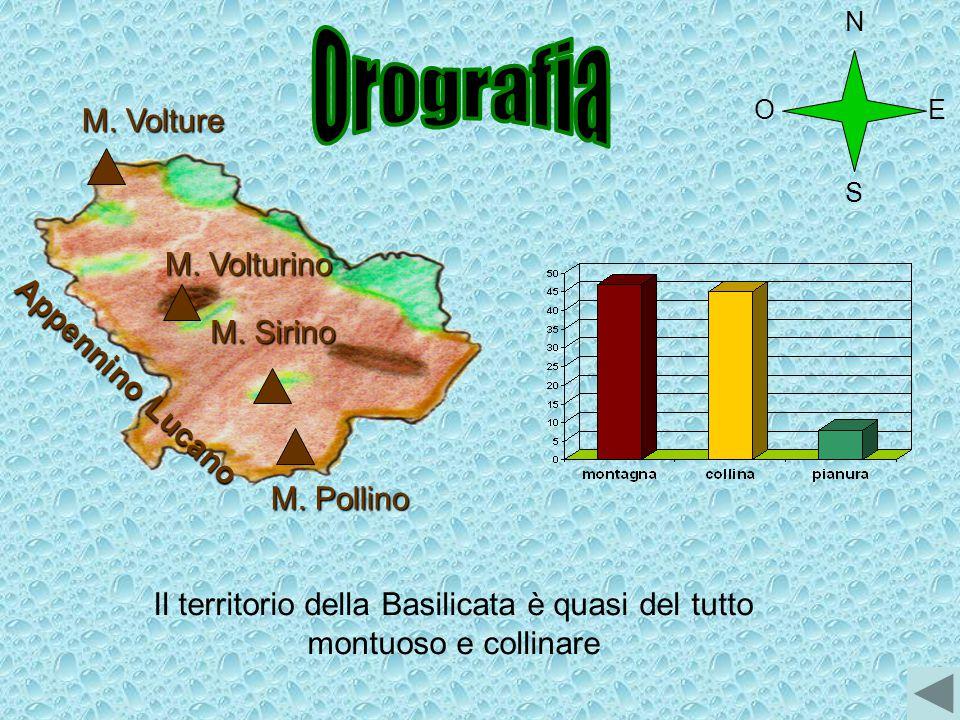 Appennino Lucano M. Volture M. Pollino M. Sirino M. Volturino Il territorio della Basilicata è quasi del tutto montuoso e collinare O N S E
