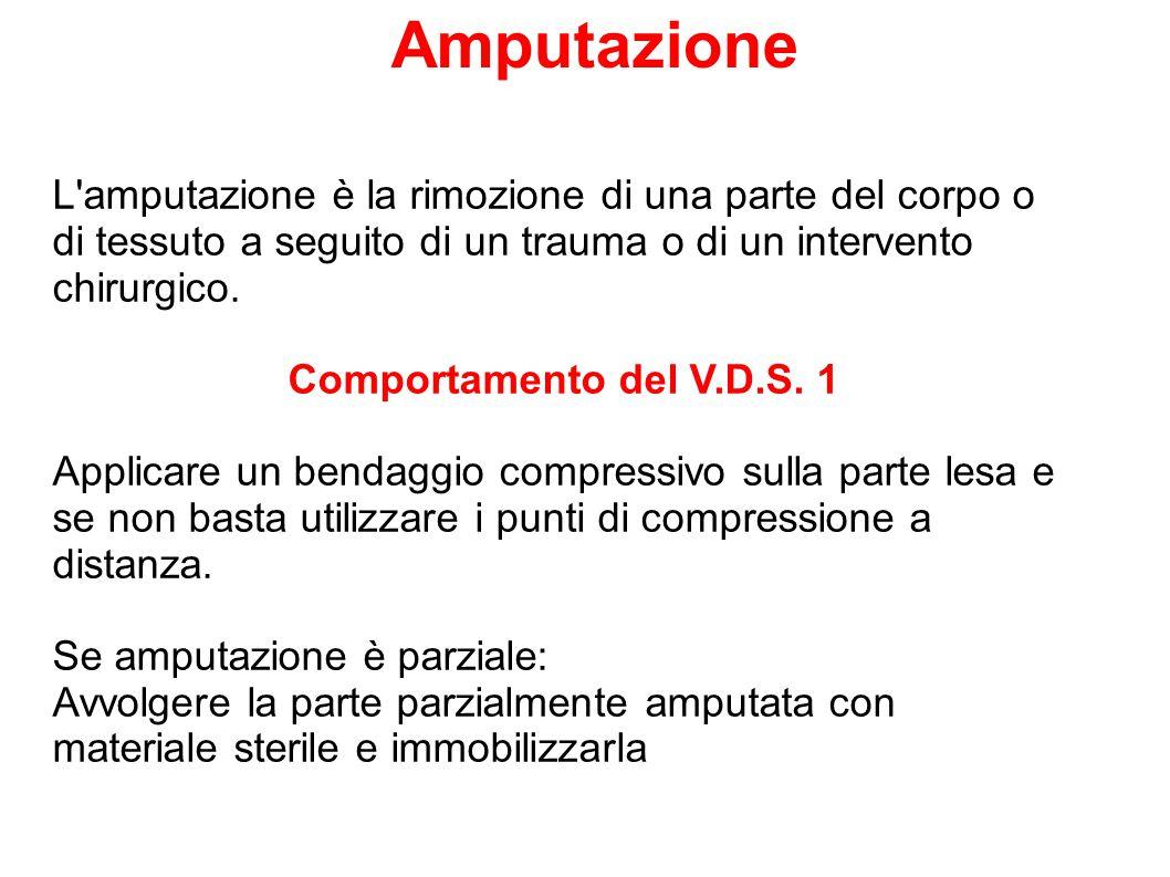 Amputazione L'amputazione è la rimozione di una parte del corpo o di tessuto a seguito di un trauma o di un intervento chirurgico. Comportamento del V