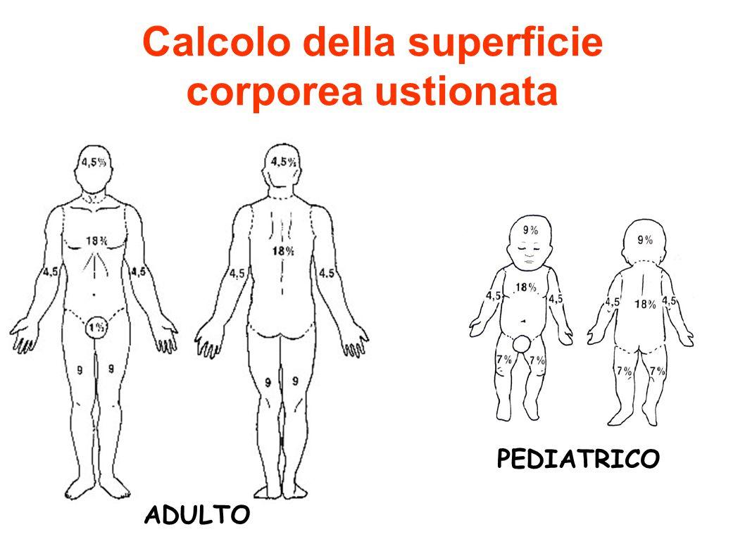 Calcolo della superficie corporea ustionata ADULTO PEDIATRICO