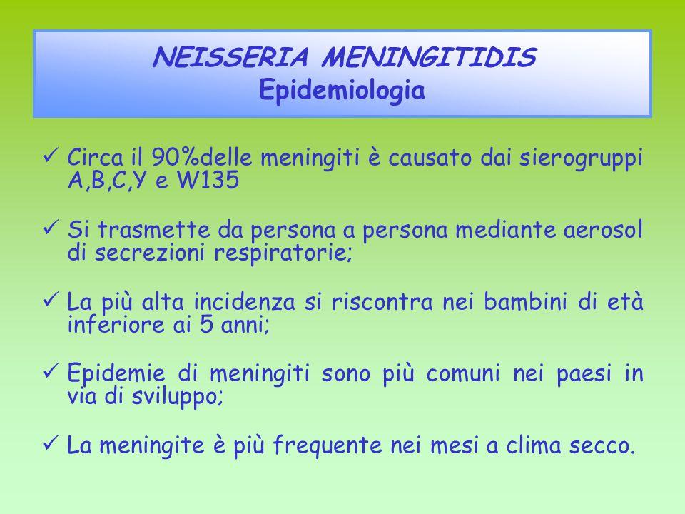 Circa il 90%delle meningiti è causato dai sierogruppi A,B,C,Y e W135 Si trasmette da persona a persona mediante aerosol di secrezioni respiratorie; La più alta incidenza si riscontra nei bambini di età inferiore ai 5 anni; Epidemie di meningiti sono più comuni nei paesi in via di sviluppo; La meningite è più frequente nei mesi a clima secco.