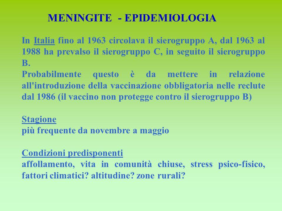 In Italia fino al 1963 circolava il sierogruppo A, dal 1963 al 1988 ha prevalso il sierogruppo C, in seguito il sierogruppo B.