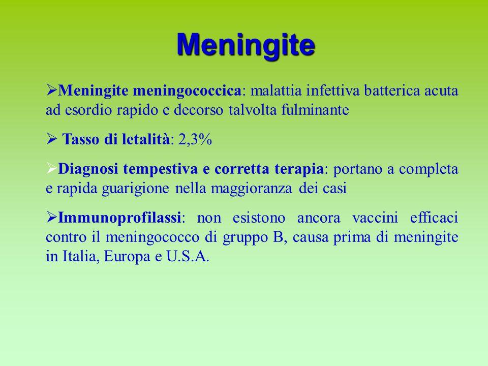 Meningite  Meningite meningococcica: malattia infettiva batterica acuta ad esordio rapido e decorso talvolta fulminante  Tasso di letalità: 2,3%  Diagnosi tempestiva e corretta terapia: portano a completa e rapida guarigione nella maggioranza dei casi  Immunoprofilassi: non esistono ancora vaccini efficaci contro il meningococco di gruppo B, causa prima di meningite in Italia, Europa e U.S.A.