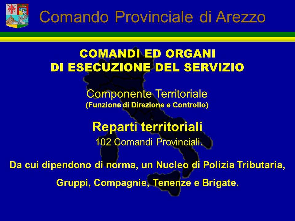 COMANDI ED ORGANI DI ESECUZIONE DEL SERVIZIO Componente Territoriale (Funzione di Direzione e Controllo) Reparti territoriali 102 Comandi Provinciali.