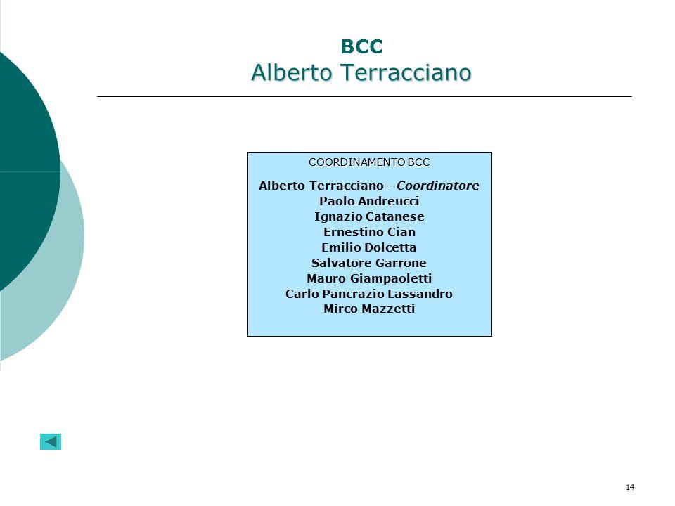 14 Alberto Terracciano BCC Alberto Terracciano COORDINAMENTO BCC Alberto Terracciano - Coordinatore Paolo Andreucci Ignazio Catanese Ernestino Cian Em