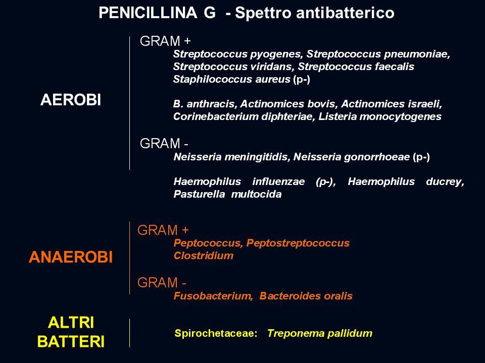 PENICILLINA G - Spettro antibatterico AEROBI ANAEROBI ALTRI BATTERI