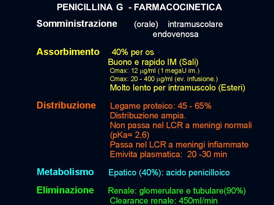PENICILLINA G - FARMACOCINETICA