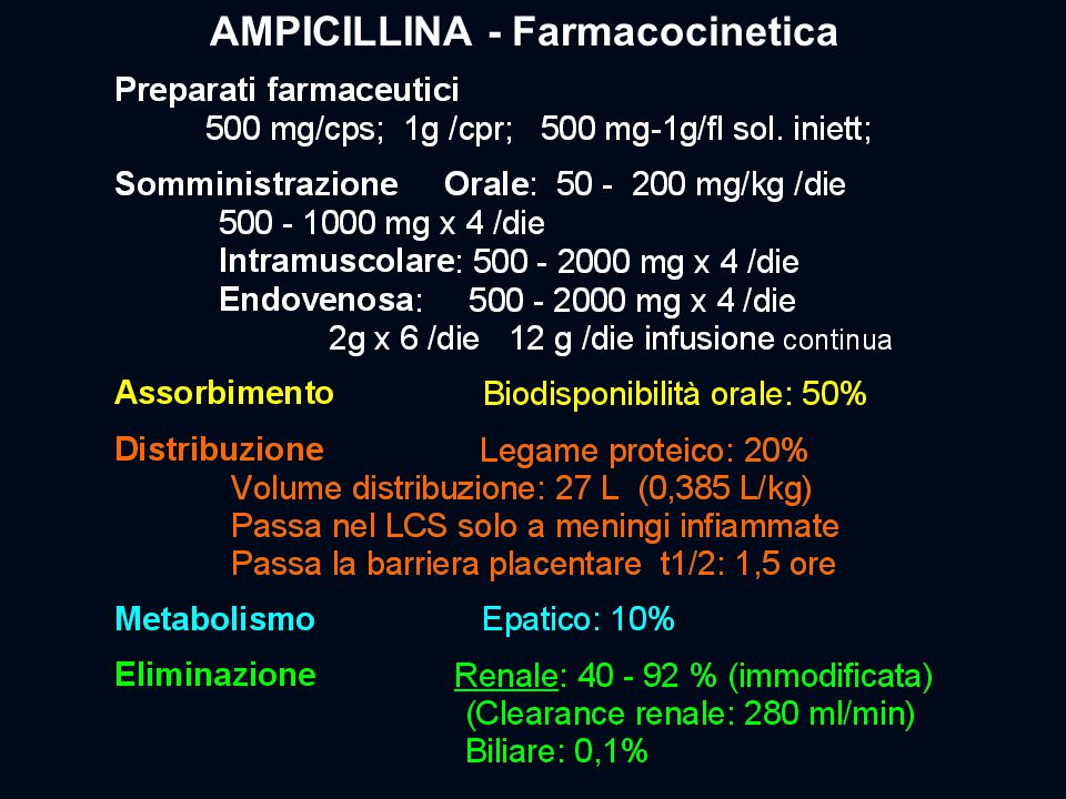 AMPICILLINA - Farmacocinetica