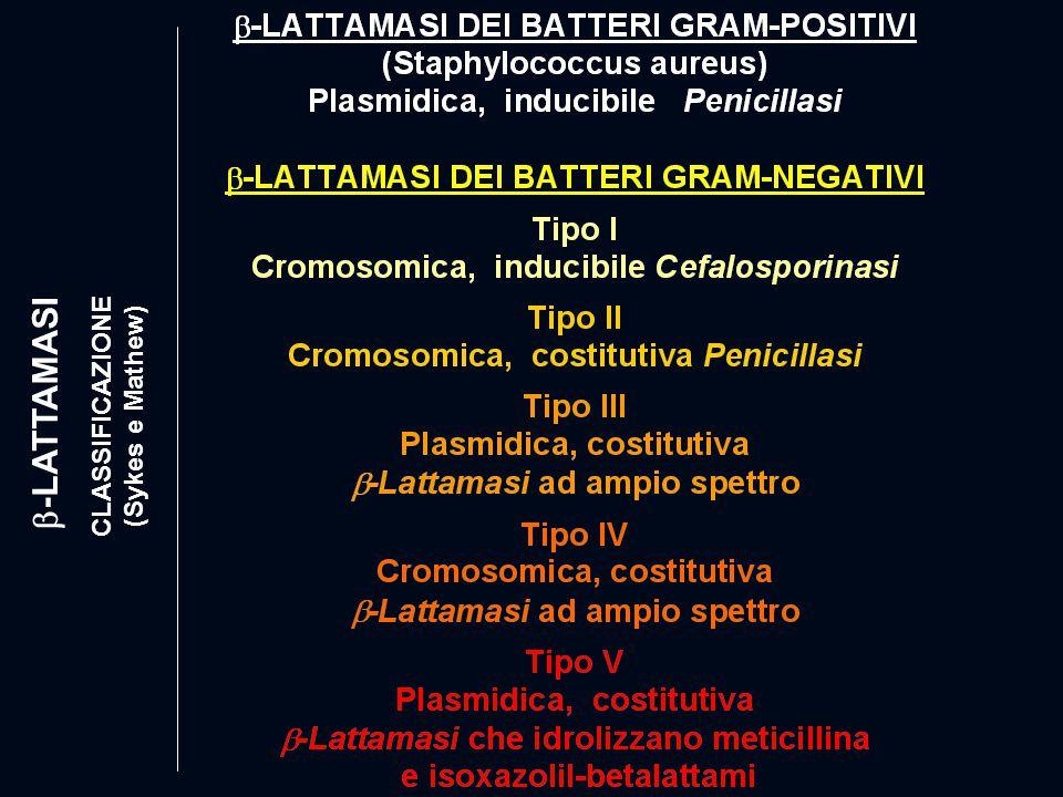 CLASSIFICAZIONE (Sykes e Mathew)  -LATTAMASI