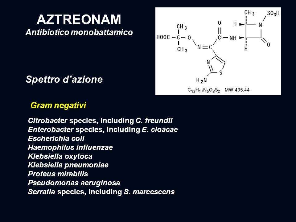 AZTREONAM Antibiotico monobattamico Citrobacter species, including C. freundii Enterobacter species, including E. cloacae Escherichia coli Haemophilus