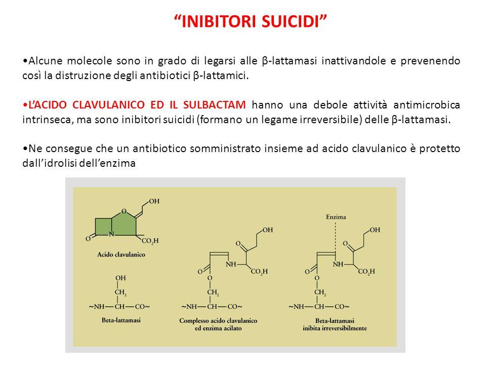 Alcune molecole sono in grado di legarsi alle β-lattamasi inattivandole e prevenendo così la distruzione degli antibiotici β-lattamici. L'ACIDO CLAVUL