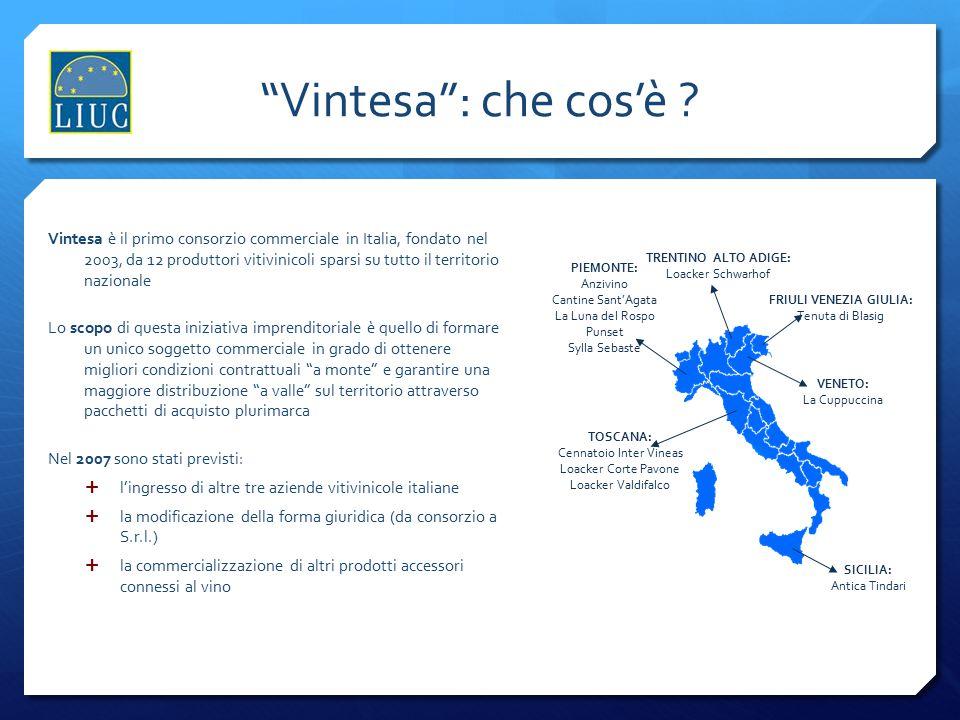 """""""Vintesa"""": che cos'è ? Vintesa è il primo consorzio commerciale in Italia, fondato nel 2003, da 12 produttori vitivinicoli sparsi su tutto il territor"""