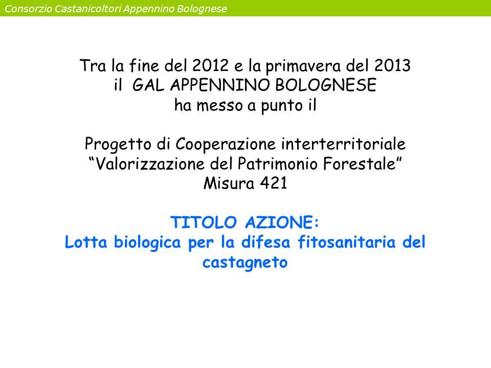 Consorzio Castanicoltori Appennino Bolognese Tra la fine del 2012 e la primavera del 2013 il GAL APPENNINO BOLOGNESE ha messo a punto il Progetto di C