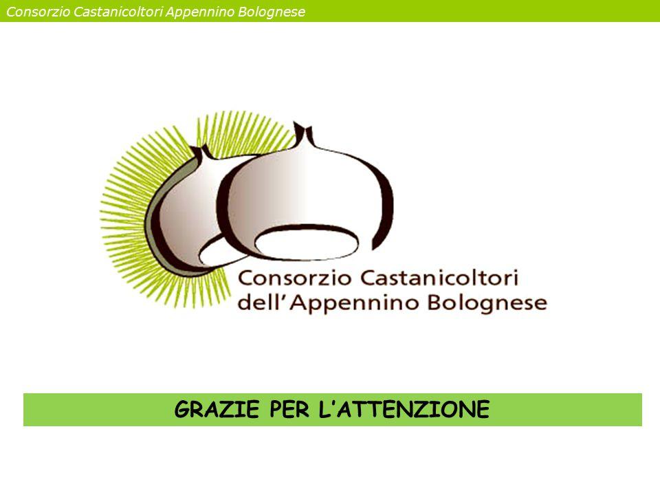 Consorzio Castanicoltori Appennino Bolognese GRAZIE PER L'ATTENZIONE