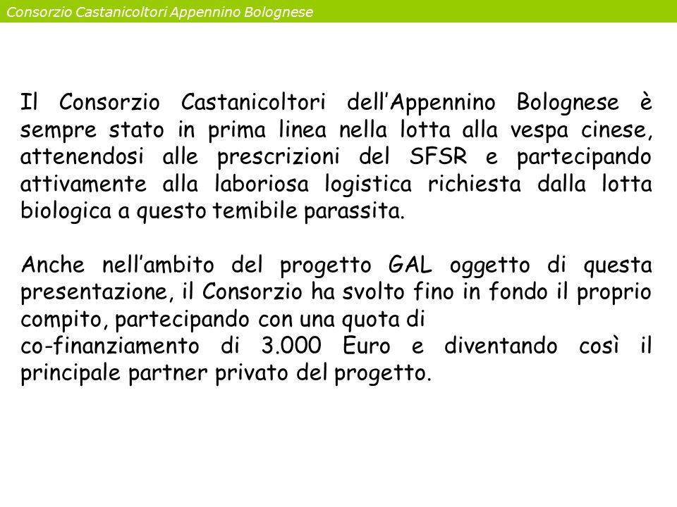 Consorzio Castanicoltori Appennino Bolognese Il Consorzio Castanicoltori dell'Appennino Bolognese è sempre stato in prima linea nella lotta alla vespa