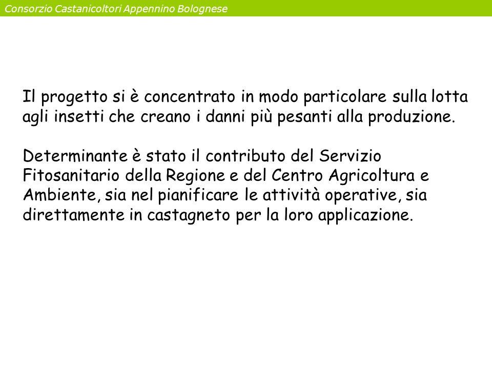 Consorzio Castanicoltori Appennino Bolognese Il progetto si è concentrato in modo particolare sulla lotta agli insetti che creano i danni più pesanti