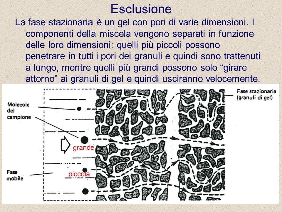 Cromatografia 226 Esclusione La fase stazionaria è un gel con pori di varie dimensioni.