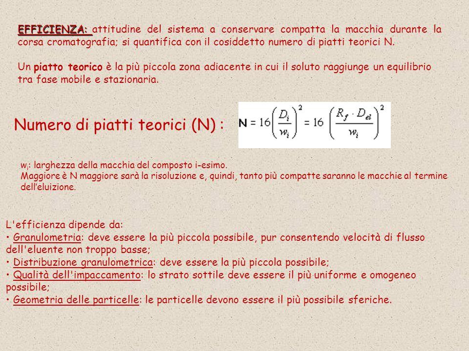 EFFICIENZA: EFFICIENZA: attitudine del sistema a conservare compatta la macchia durante la corsa cromatografia; si quantifica con il cosiddetto numero di piatti teorici N.