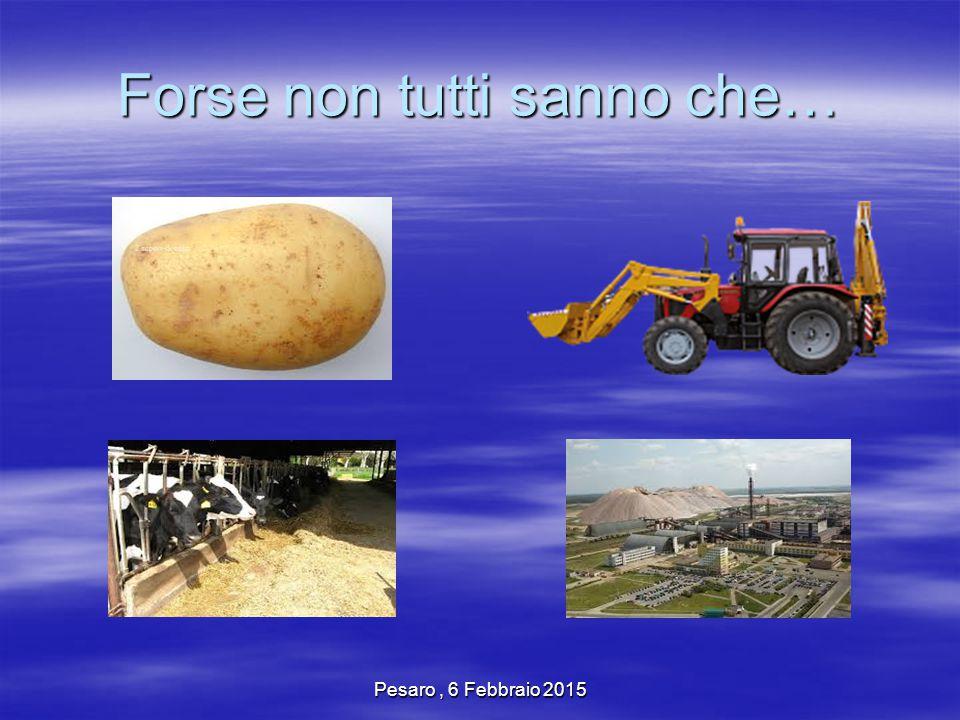 Pesaro, 6 Febbraio 2015 Forse non tutti sanno che…