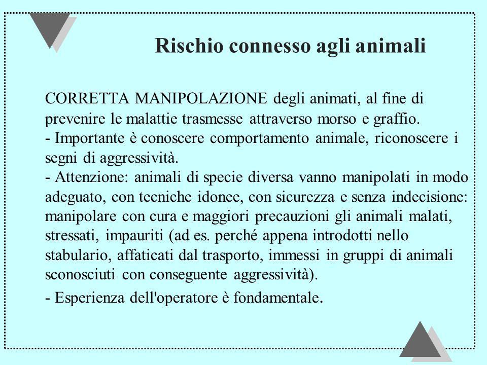 Rischio connesso agli animali CORRETTA MANIPOLAZIONE degli animati, al fine di prevenire le malattie trasmesse attraverso morso e graffio.