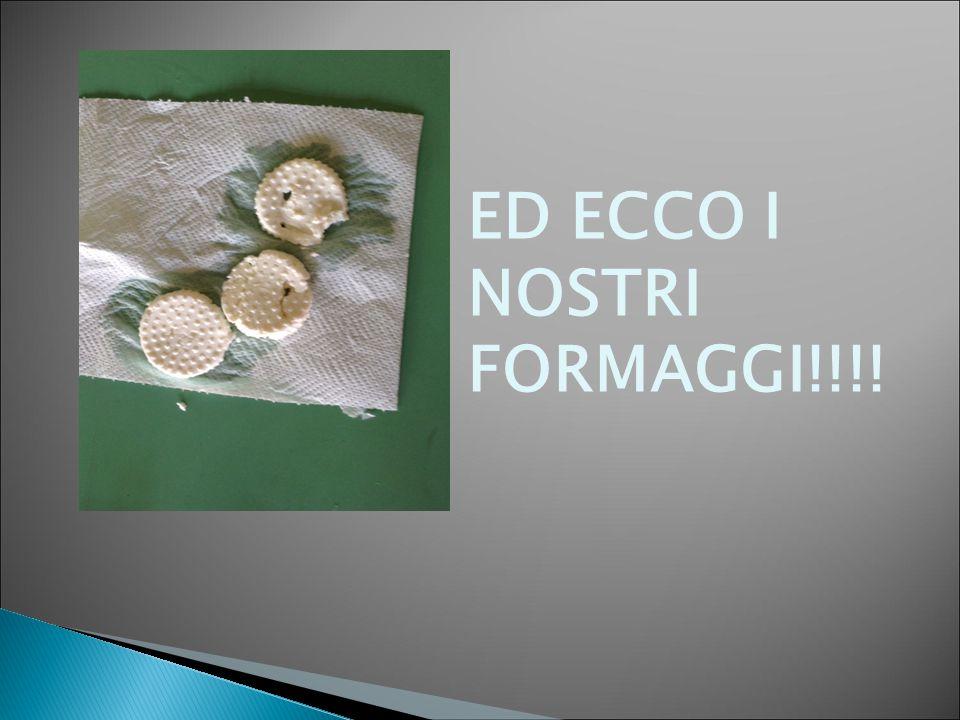 ED ECCO I NOSTRI FORMAGGI!!!!