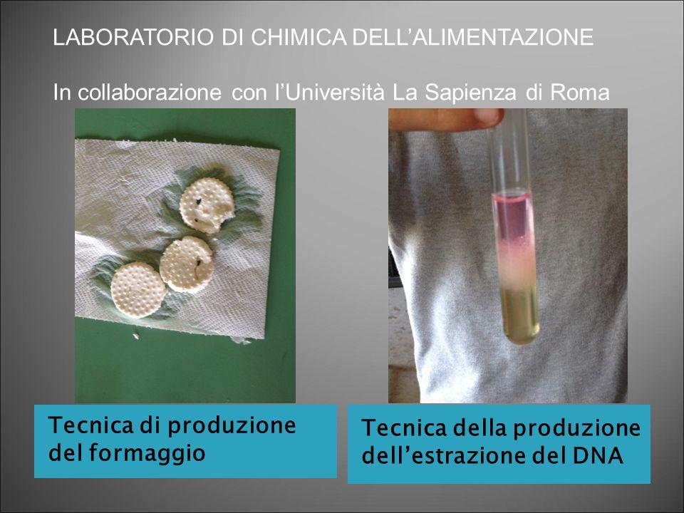 Tecnica di produzione del formaggio Tecnica della produzione dell'estrazione del DNA LABORATORIO DI CHIMICA DELL'ALIMENTAZIONE In collaborazione con l