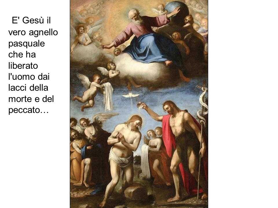 E Gesù il vero agnello pasquale che ha liberato l uomo dai lacci della morte e del peccato…