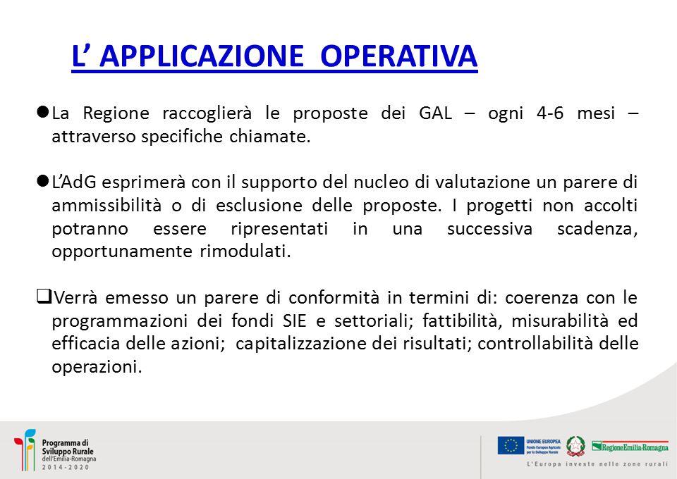 L' APPLICAZIONE OPERATIVA La Regione raccoglierà le proposte dei GAL – ogni 4-6 mesi – attraverso specifiche chiamate.