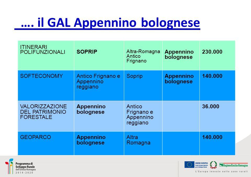 ITINERARI POLIFUNZIONALI SOPRIP Altra-Romagna Antico Frignano Appennino bolognese 230.000 SOFTECONOMYAntico Frignano e Appennino reggiano SopripAppennino bolognese 140.000 VALORIZZAZIONE DEL PATRIMONIO FORESTALE Appennino bolognese Antico Frignano e Appennino reggiano 36.000 GEOPARCOAppennino bolognese Altra Romagna 140.000 ….