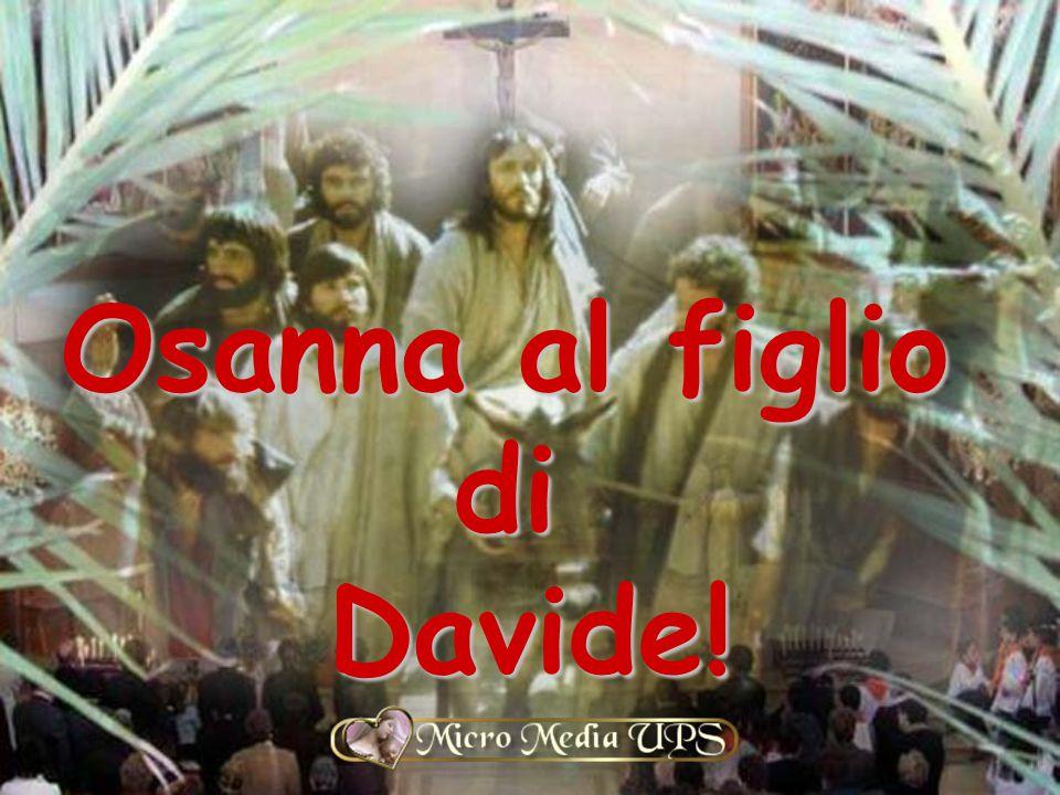 Osanna al figlio diDavide!