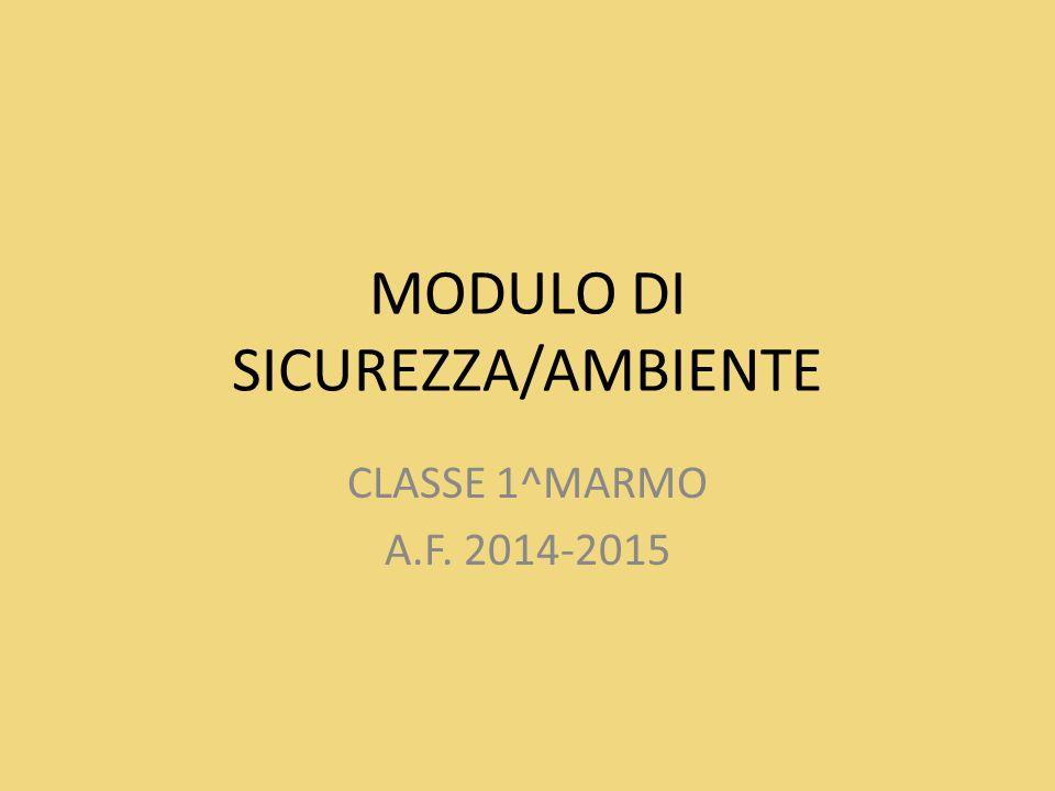 MODULO DI SICUREZZA/AMBIENTE CLASSE 1^MARMO A.F. 2014-2015