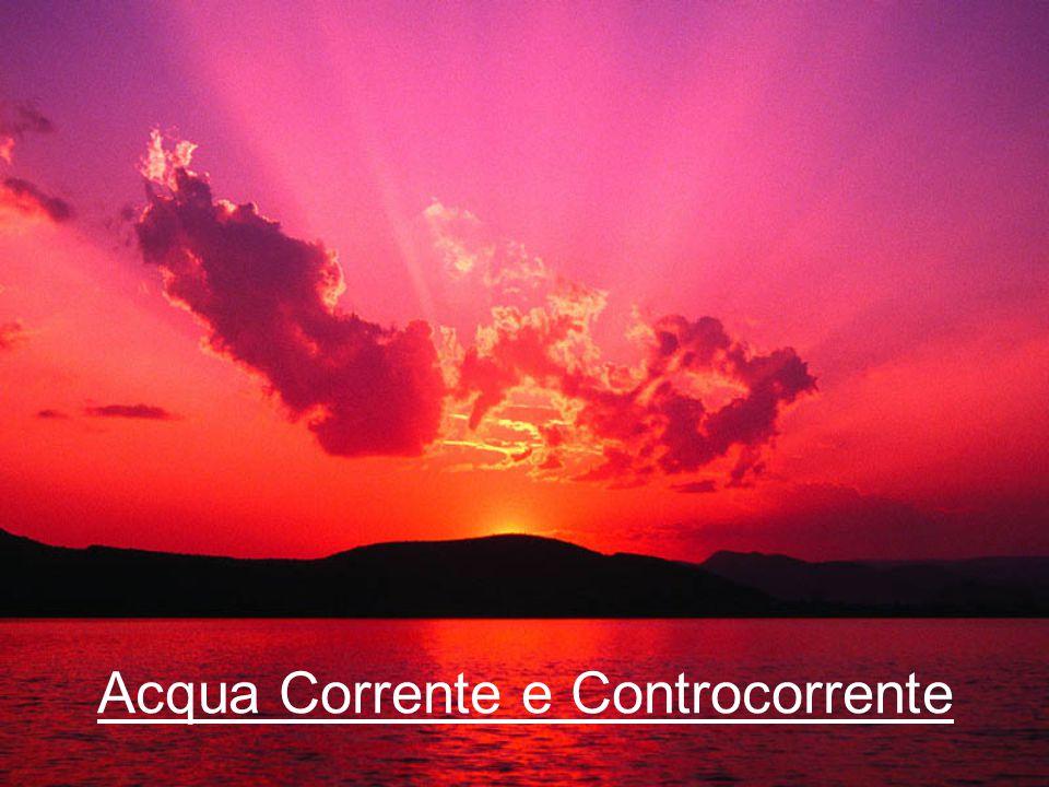 Acqua Corrente e Controcorrente