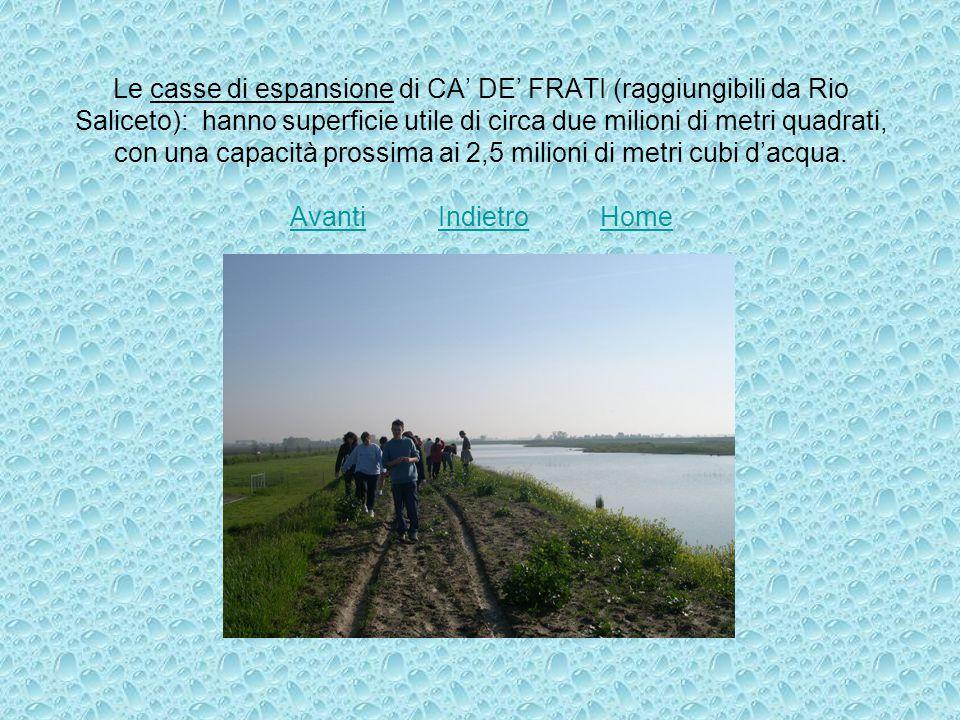 Le casse di espansione di CA' DE' FRATI (raggiungibili da Rio Saliceto): hanno superficie utile di circa due milioni di metri quadrati, con una capacità prossima ai 2,5 milioni di metri cubi d'acqua.