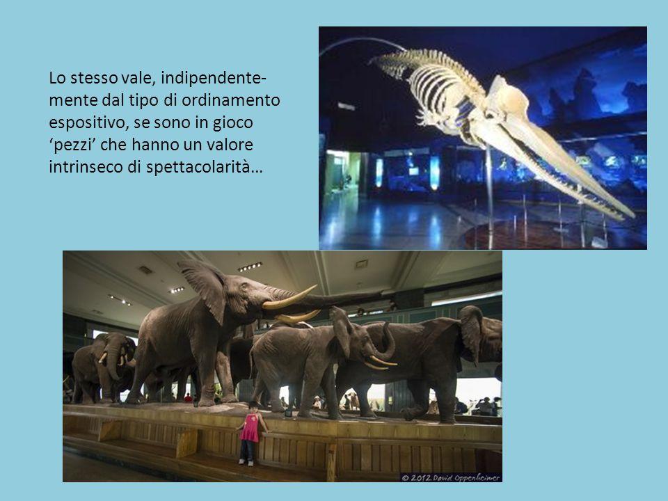 E cosa si può dire dei musei basati su un rapporto di interattività col visitatore come i science centers.
