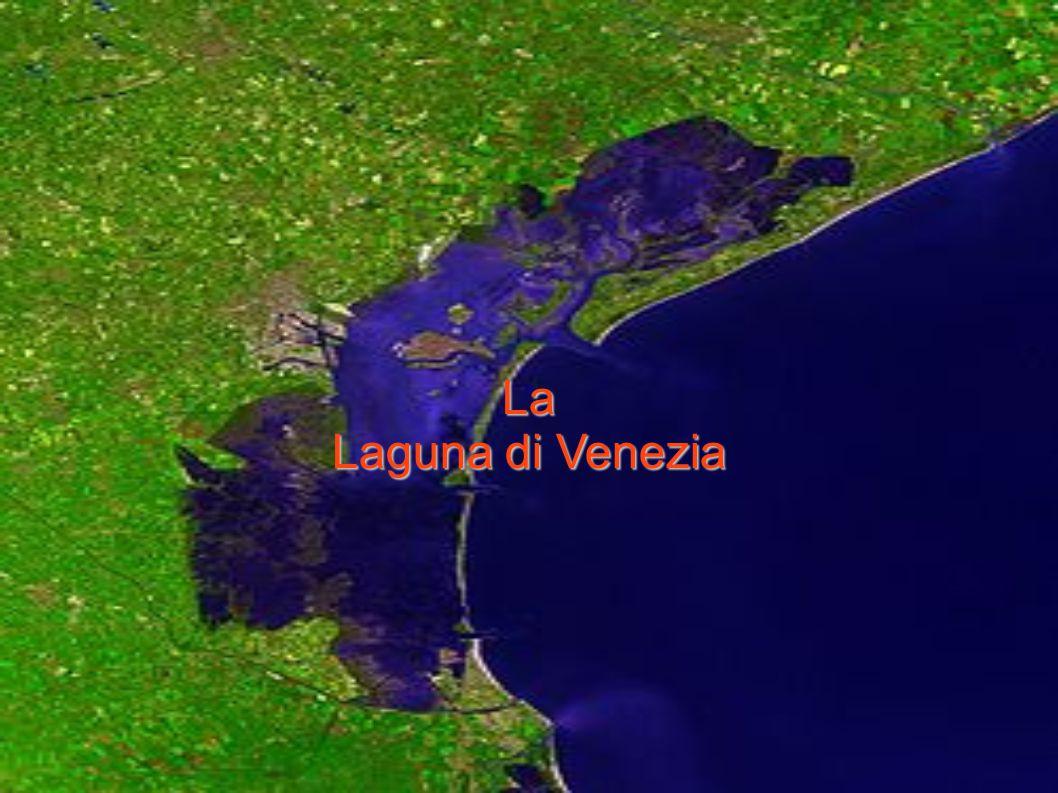 più di 300 mulini ad acqua macinavano il grano portato da Venezia a Treviso