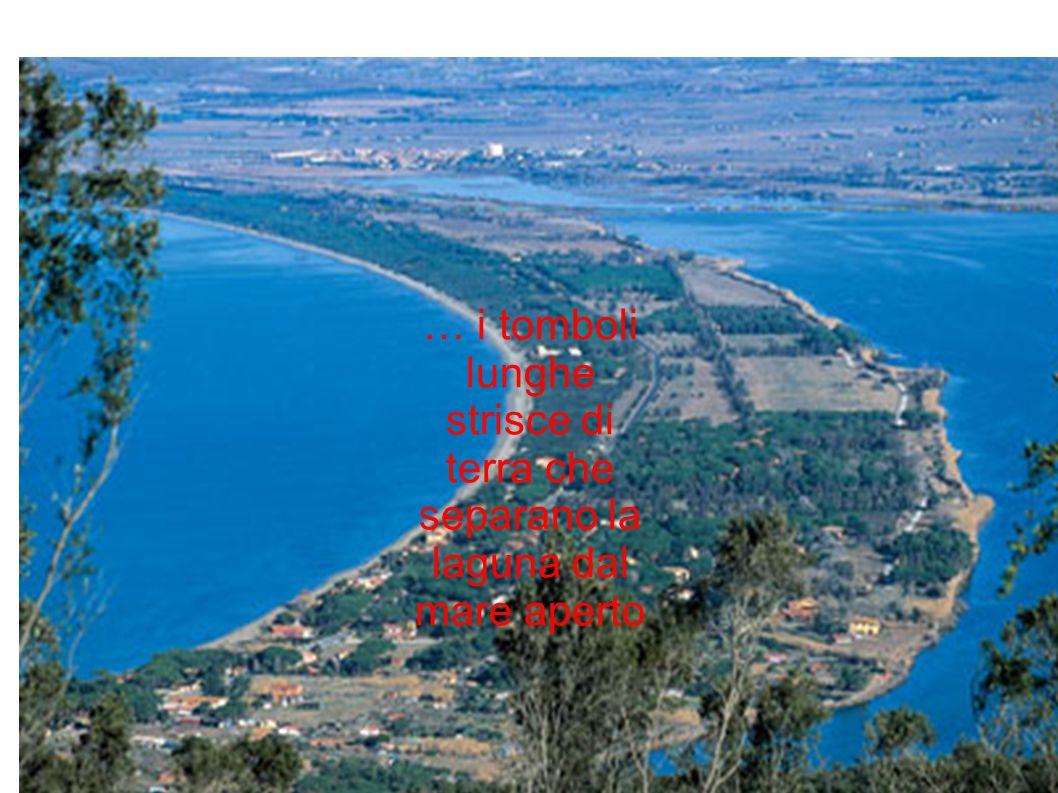 … i tomboli lunghe strisce di terra che separano la laguna dal mare aperto