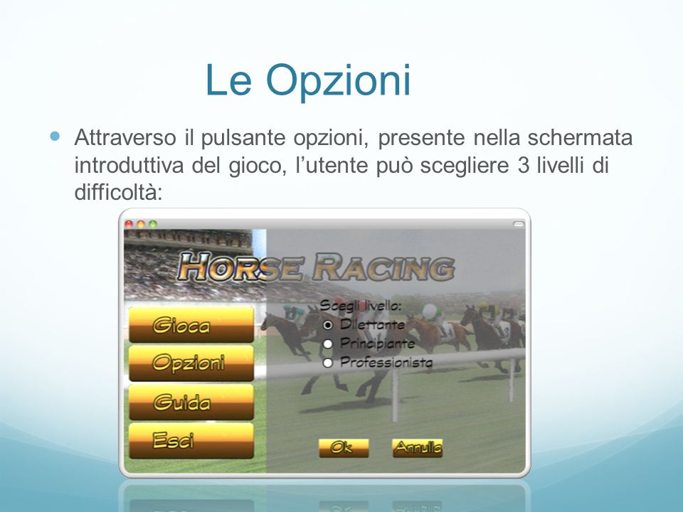 Le Opzioni Attraverso il pulsante opzioni, presente nella schermata introduttiva del gioco, l'utente può scegliere 3 livelli di difficoltà: