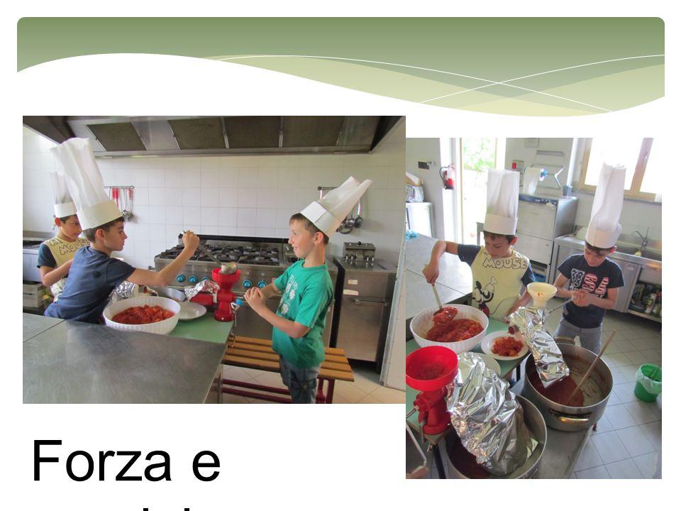 Passata di pomodoro Cipolla e Carote Pomodori e Zucchero Fare il soffritto di carota e cipolla a cui aggiungere poi i pomodori puliti dai semi ed un cucchiaio di zucchero.