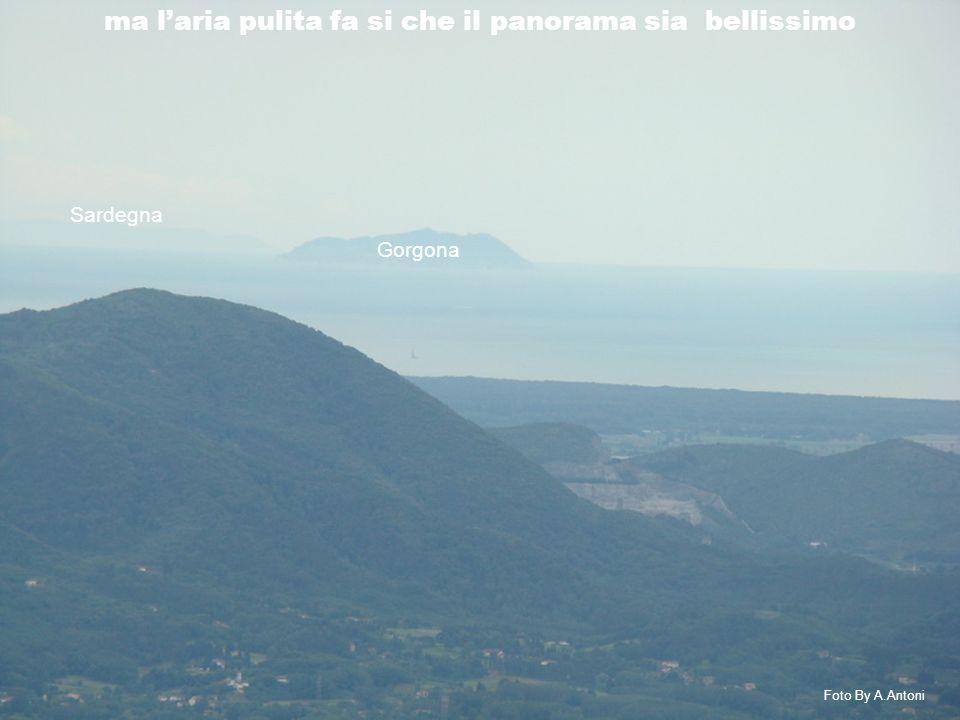 Gorgona Foto By A.Antoni ma l'aria pulita fa si che il panorama sia bellissimo Sardegna
