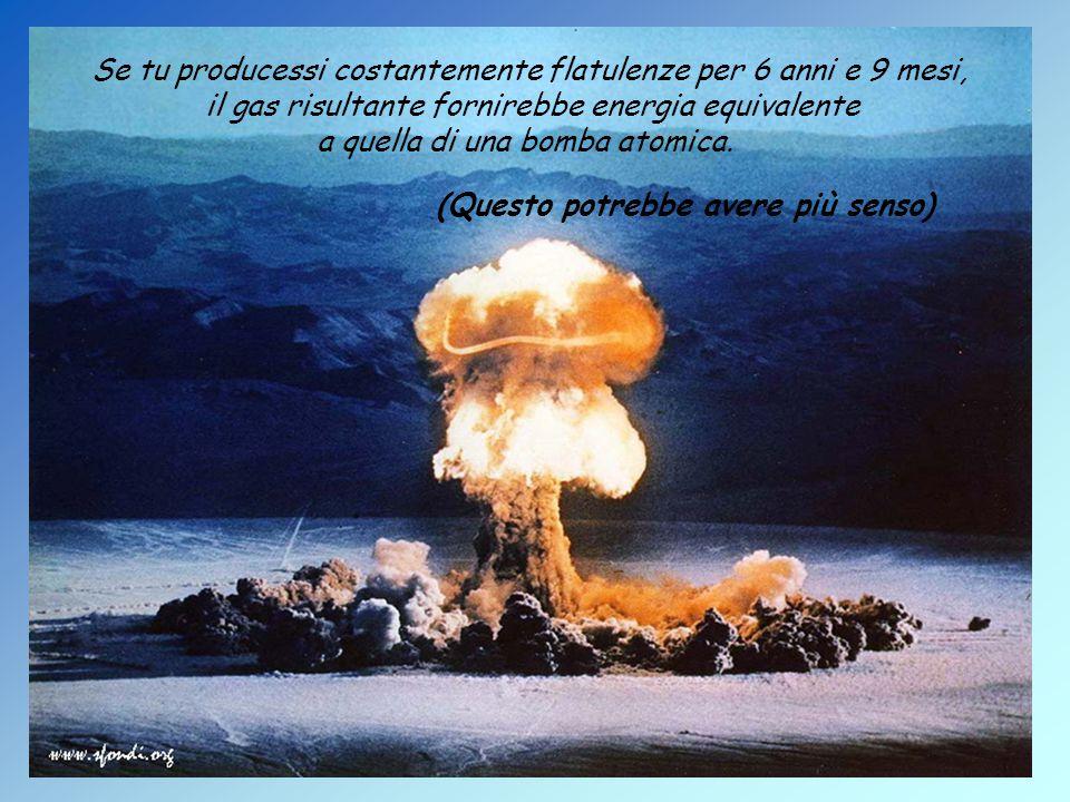 Se tu producessi costantemente flatulenze per 6 anni e 9 mesi, il gas risultante fornirebbe energia equivalente a quella di una bomba atomica.