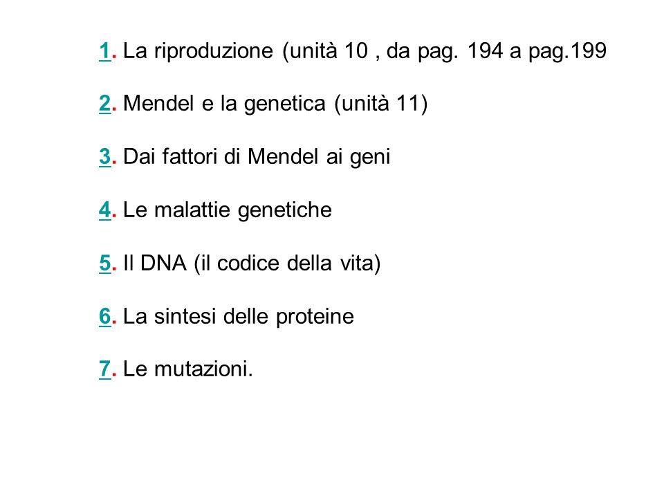 11. La riproduzione (unità 10, da pag. 194 a pag.199 2. Mendel e la genetica (unità 11) 3. Dai fattori di Mendel ai geni 4. Le malattie genetiche 5. I