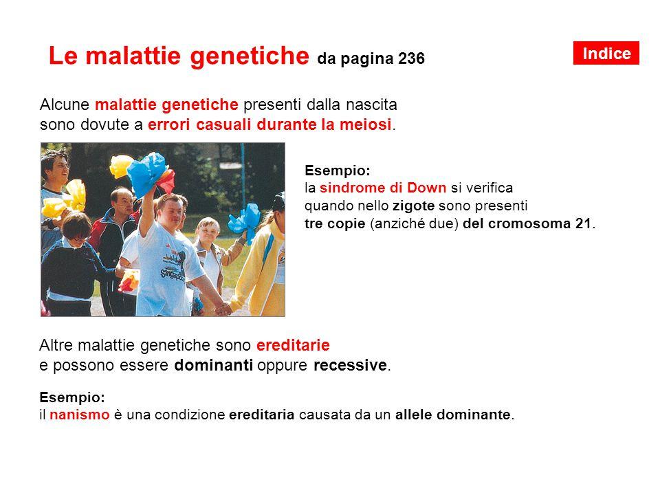 Le malattie genetiche da pagina 236 Alcune malattie genetiche presenti dalla nascita sono dovute a errori casuali durante la meiosi. Esempio: la sindr