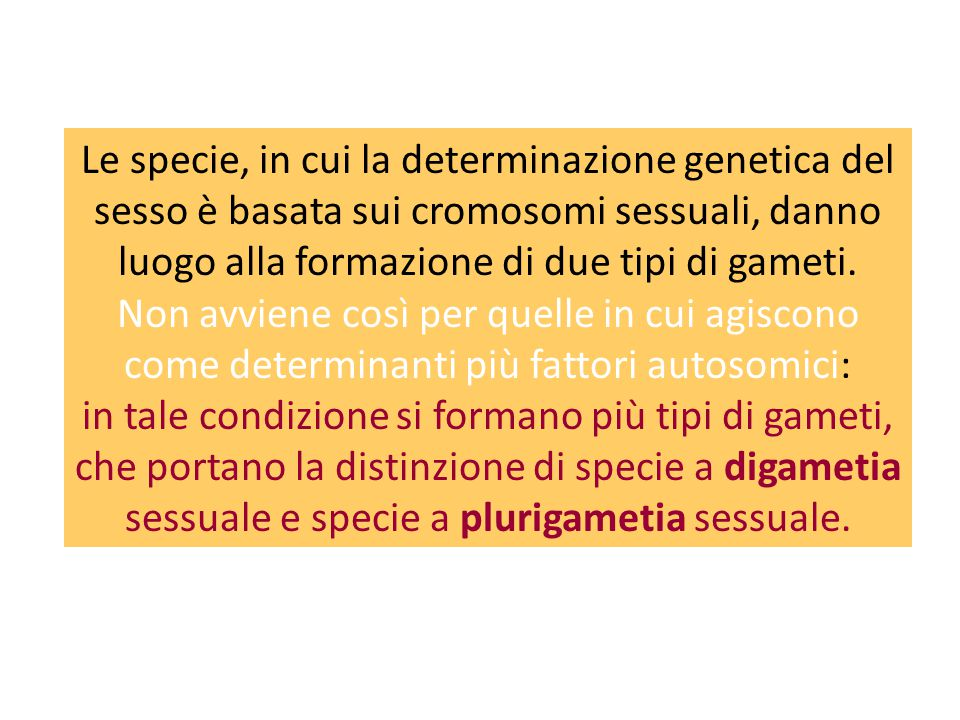 Le specie, in cui la determinazione genetica del sesso è basata sui cromosomi sessuali, danno luogo alla formazione di due tipi di gameti. Non avviene