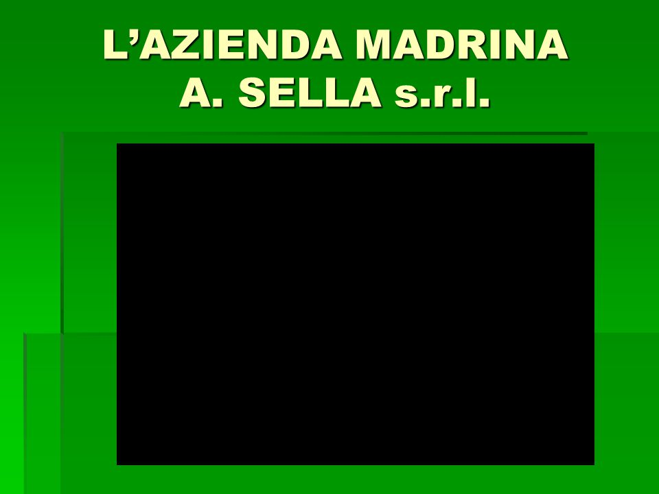 L'AZIENDA MADRINA A. SELLA s.r.l.